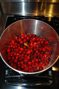 Cranberry concoction